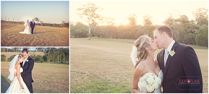Bride and Groom Wedding Photos at Sirromet Winery, Mount Cotton
